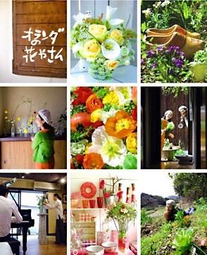 Top_photo_2